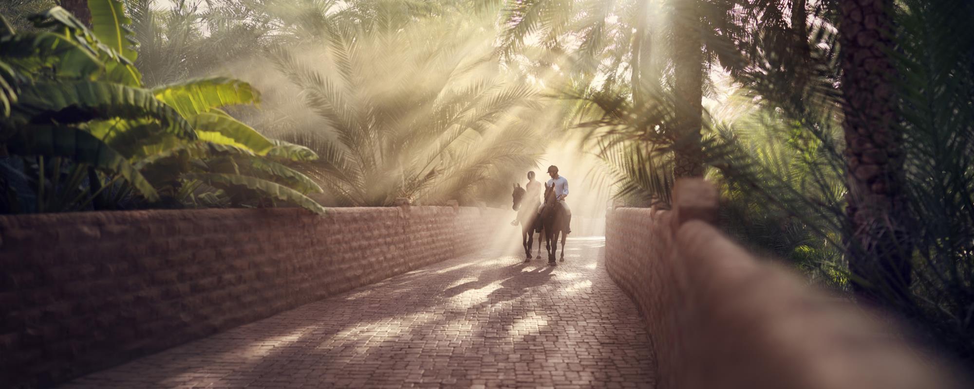 Al Ain Oasis Events Visitabudhabi Ae