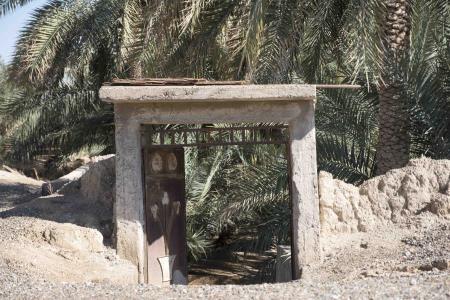 Al Hili Oasis