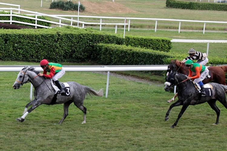 HH Sheikh Mansour Bin Zayed Al Nahyan Global Arabian Horse ... - photo#11