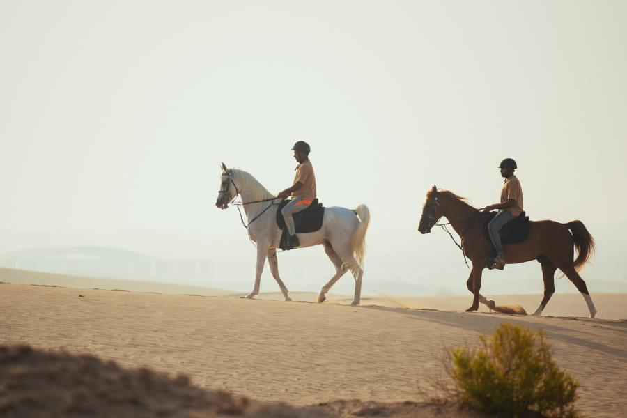 Desert Horse Riding tours with Rabdan Equestrian Club