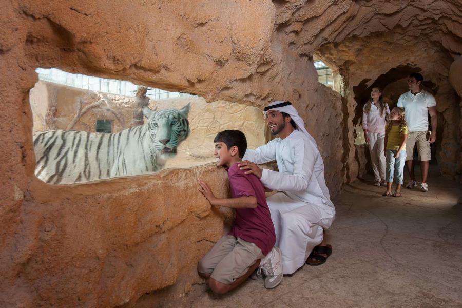 Emirates Park Zoo Virtual Winter Camp